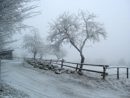 Зимна приказка/Winter fairy tale